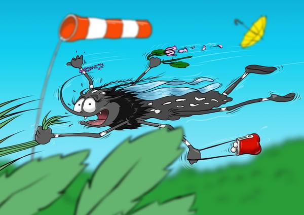 Tigermücke Marcy mag keinen Wind