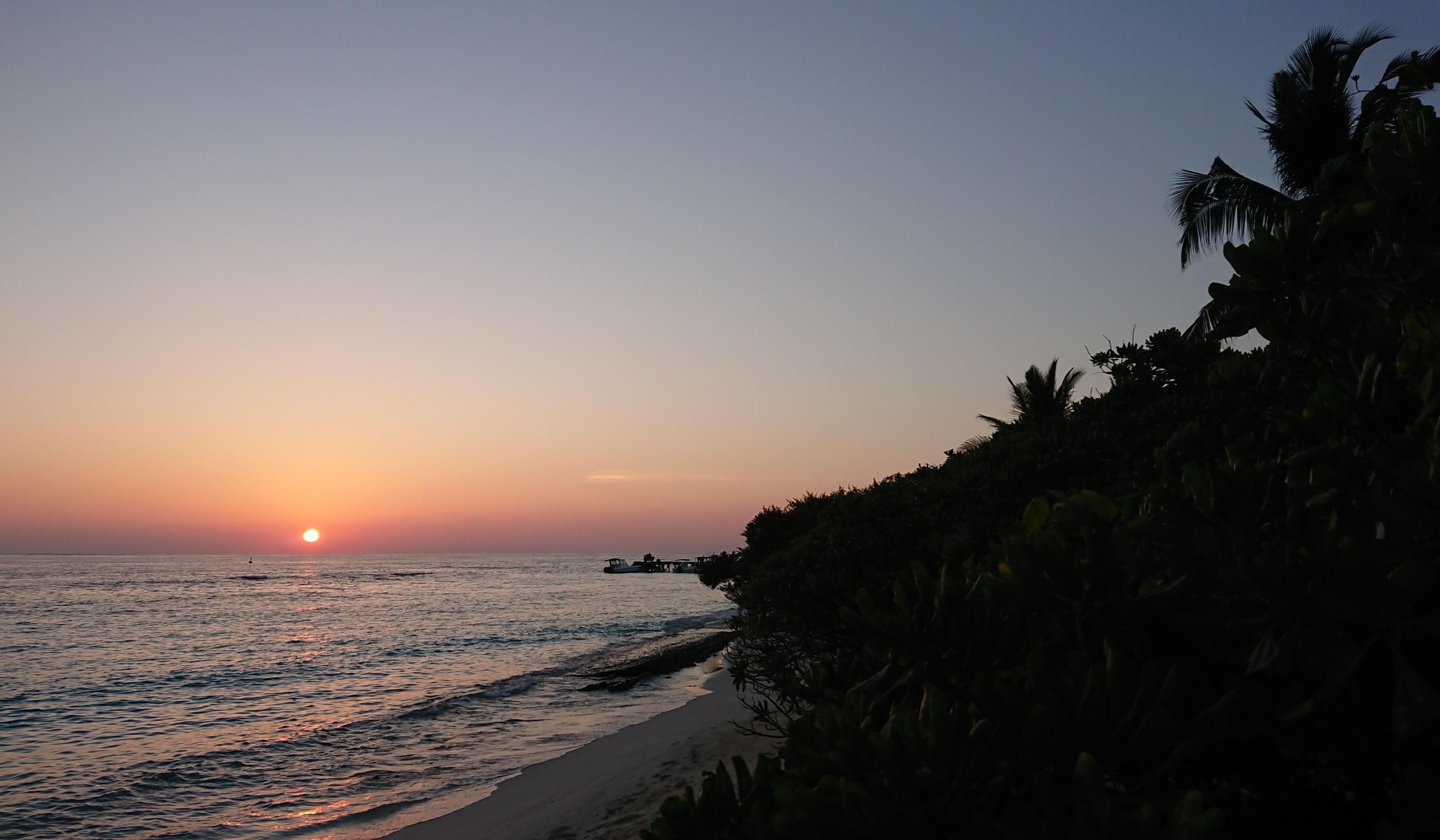 Soneva et Biogents s'engagent pour un contrôle des nuisibles qui respecte l'environnement aux Maldives