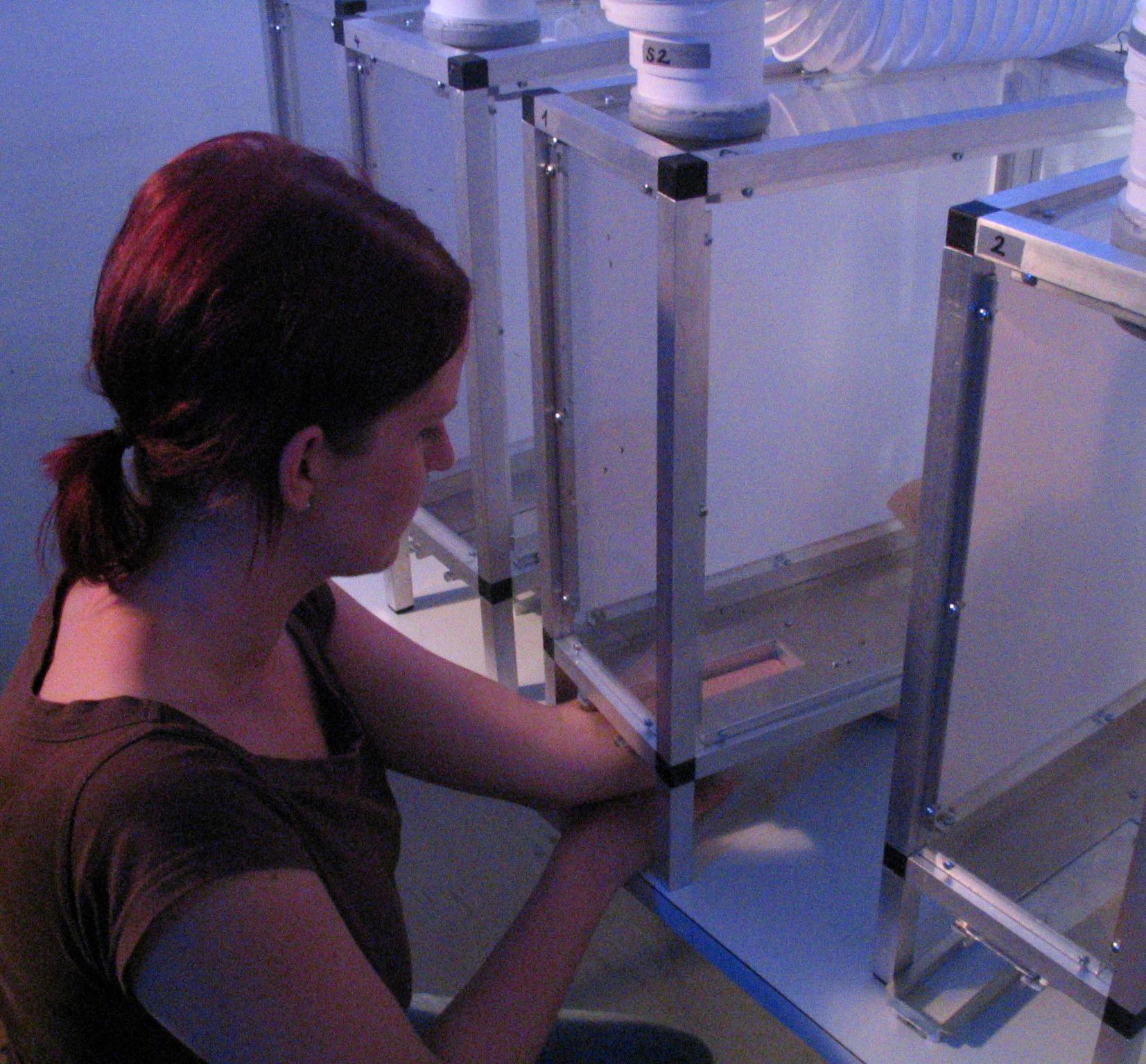 BG-cage Biogents testet Mückensprays
